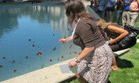 Jamie Martin-Currie, Missioner for Christian Education, placing a flower in the Reflection Pool