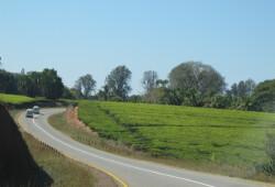 Malawi pic 9