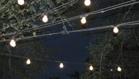 Starry Nights 2013 - Austin