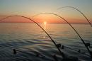 A Fishing Story