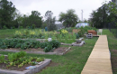 League City Community Garden Calls for Volunteers