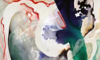 Meredith Barineau Gallery (8)