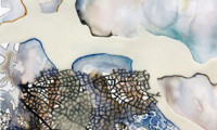 Meredith Barineau Gallery (11)