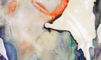 Meredith Barineau Gallery (9)