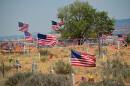 Tattered Flags Mark Codetalker Graves