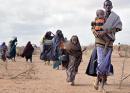 Refugee Crisis Enlivens Scripture