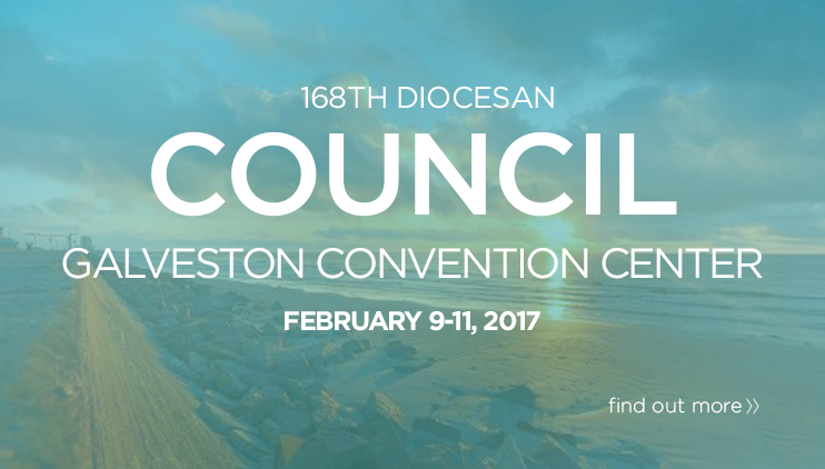banner_council2016