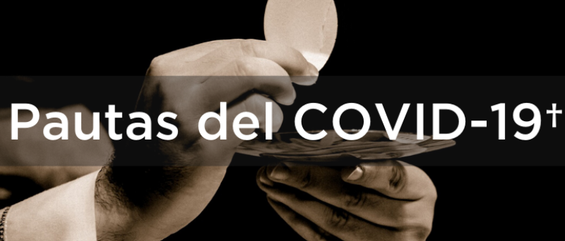 Pautas del COVID-19