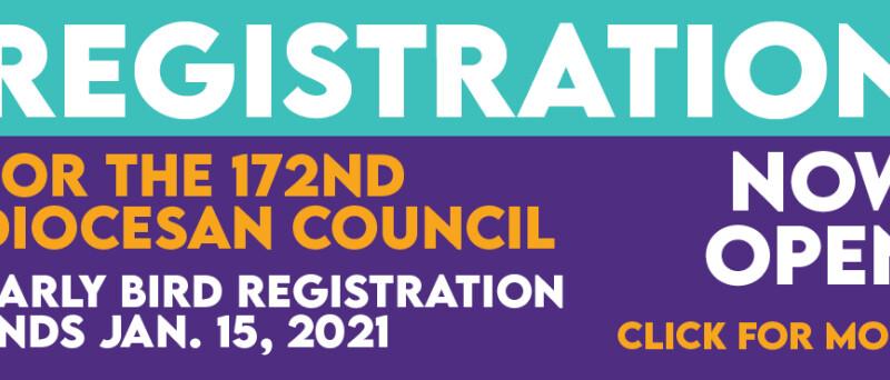 Council Registration 2020